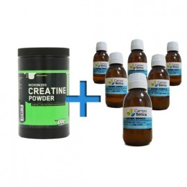 Comprar Al Gusto PACK OPTIMUM NUTRITION - CREATINA AL GUSTO marca Optimum Nutrition. Precio 24,70 €