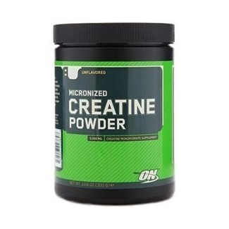 Comprar Creatina OPTIMUM NUTRITION - CREATINA POWDER 317 GR marca Optimum Nutrition. Precio 13,90 €
