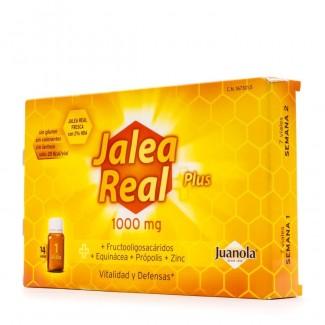 Comprar Vitaminas Minerales y Antioxidantes JUANOLA - JALEA REAL PLUS 14 VIALES marca ANGELINI. Precio 10,80€