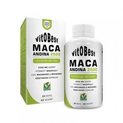 Comprar Vitaminas VITOBEST - MACA ANDINA 60 CAPS marca VitOBest. Precio 10,90€