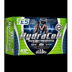 Comprar Vitaminas VITOBEST - HYDRACELL - MAX PERMEABILITY marca VitOBest. Precio 17,99€