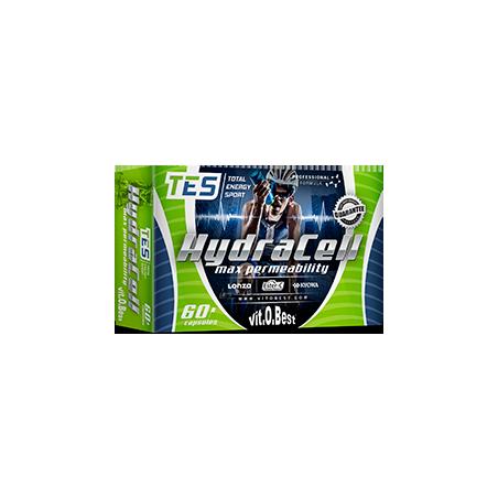 Comprar Vitaminas VITOBEST - HYDRACELL - MAX PERMEABILITY 60 CAPS marca VitOBest. Precio 19,90€